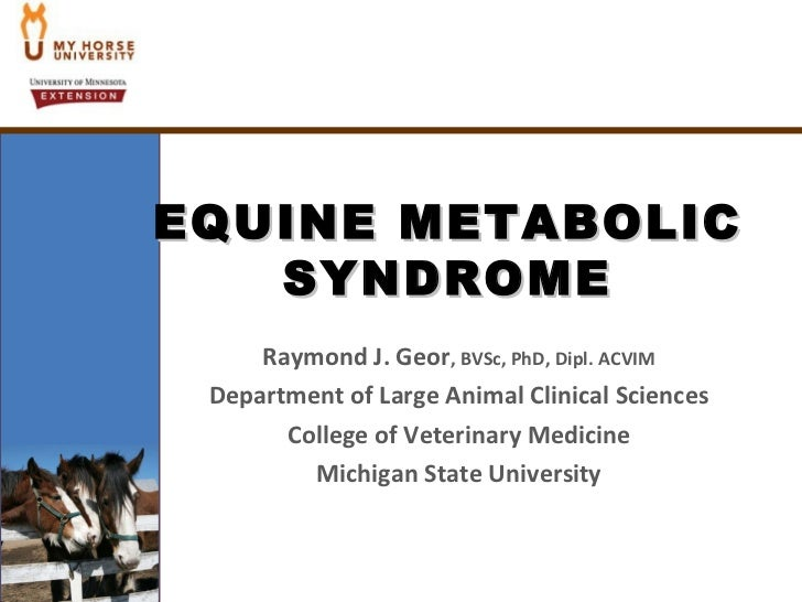 Equine Metabolic Syndrome (Geor)