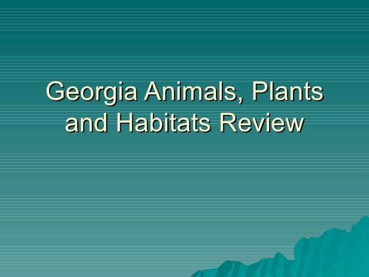 Georgia Animals, Plants and Habitats Review
