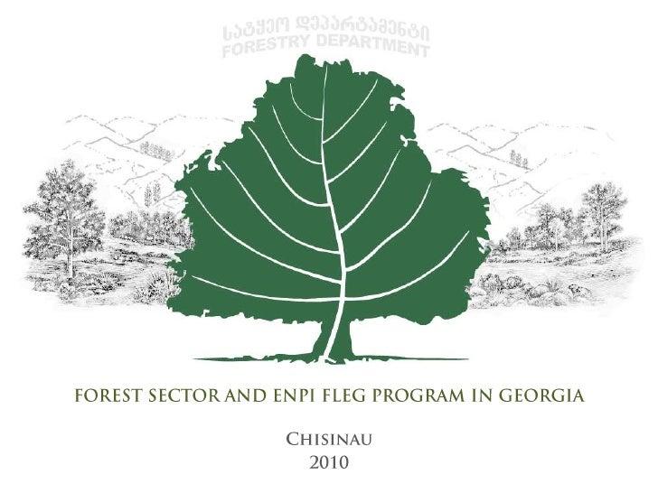 FOREST SECTOR AND ENPI FLEG PROGRAM IN GEORGIA<br />Chisinau <br />2010<br />