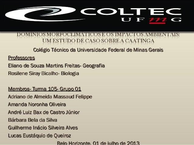 Colégio Técnico da Universidade Federal de Minas GeraisColégio Técnico da Universidade Federal de Minas GeraisProfessoresP...