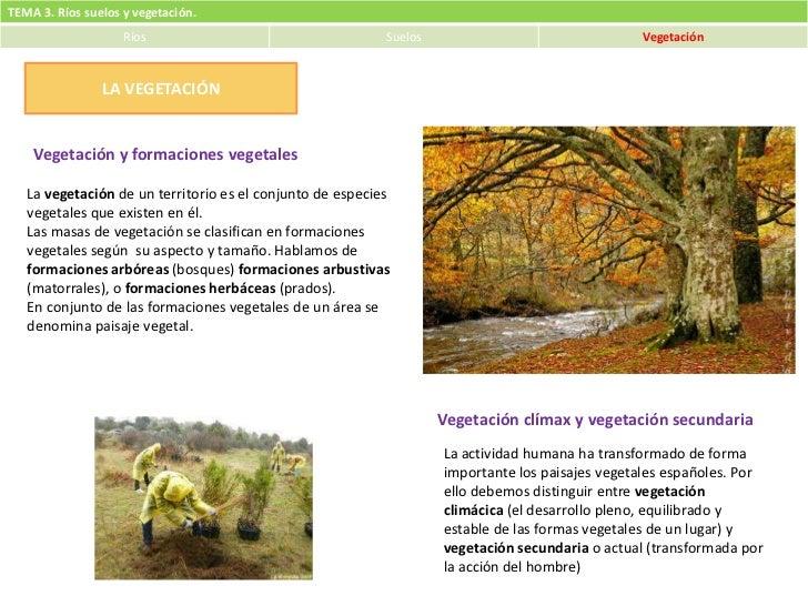 Tema 3. Ríos, suelos y vegetación (3)