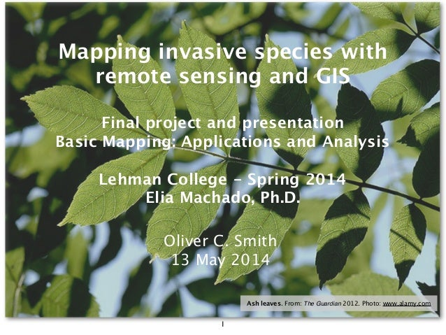 Final project and presentation Basic Mapping: Applications and Analysis Lehman College - Spring 2014 Elia Machado, Ph.D. M...