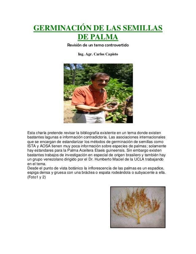 GERMINACIÓN DE LAS SEMILLAS           DE PALMA                       Revisión de un tema controvertido                    ...