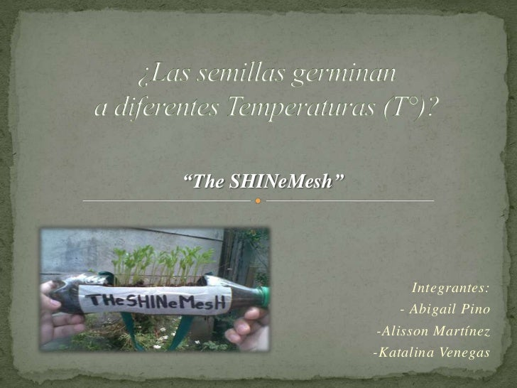 """The SHINeMesh""                         Integrantes:                       - Abigail Pino                   -Alisson Martí..."