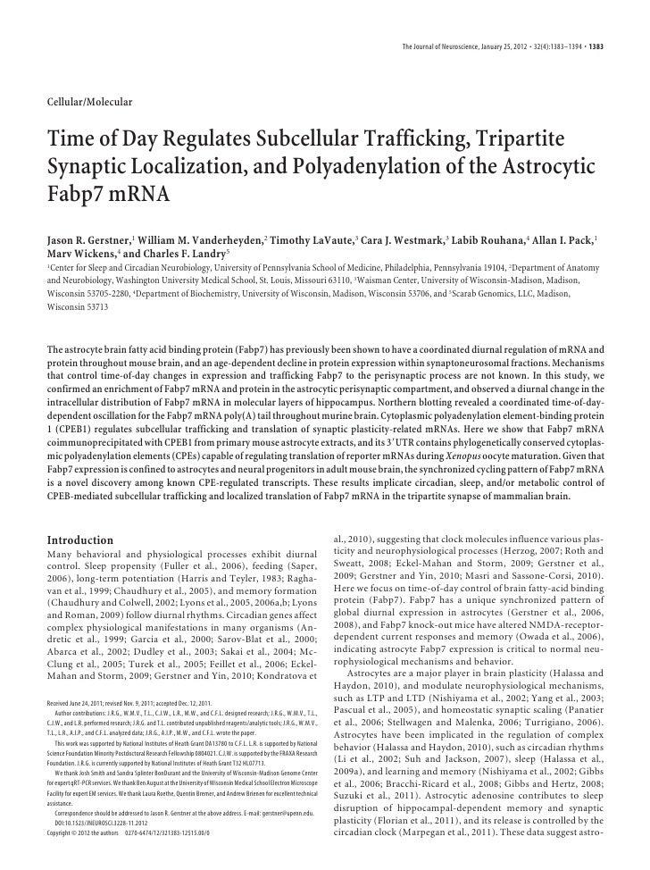 The Journal of Neuroscience, January 25, 2012 • 32(4):1383–1394 • 1383Cellular/MolecularTime of Day Regulates Subcellular ...