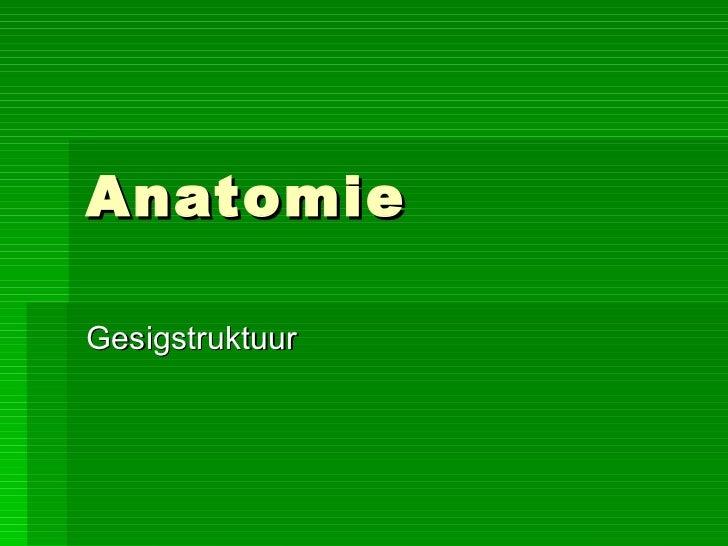 Anatomie Gesigstruktuur