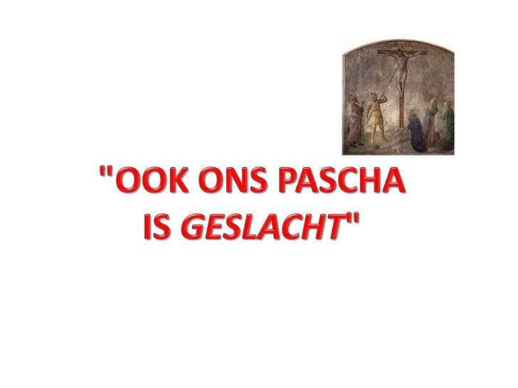 ook ons Pascha is geslacht