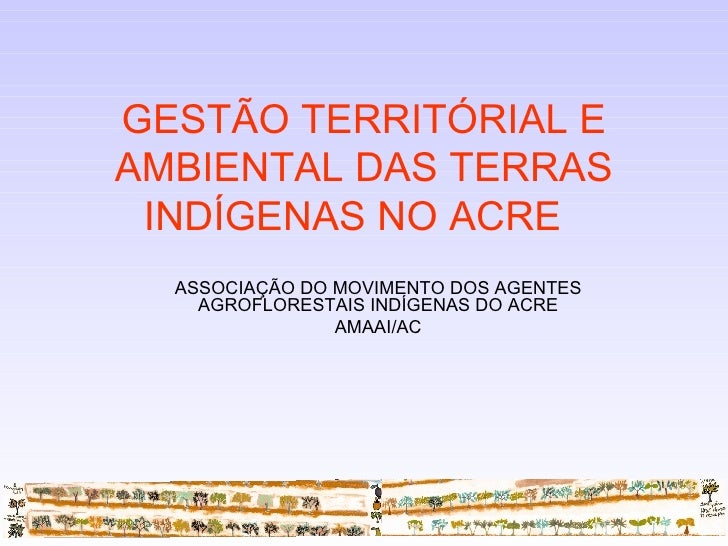 ASSOCIAÇÃO DO MOVIMENTO DOS AGENTES AGROFLORESTAIS INDÍGENAS DO ACRE AMAAI/AC GESTÃO TERRITÓRIAL E AMBIENTAL DAS TERRAS IN...