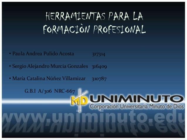 HERRAMIENTAS PARA LA              FORMACIÒN PROFESIONAL• Paula Andrea Pulido Acosta        317314• Sergio Alejandro Murcia...