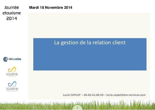 1  La gestion de la relation client  Lucie CAPLAT – 04.66.42.68.30 – lucie.caplat@bm-services.com  Mardi 18 Novembre 2014