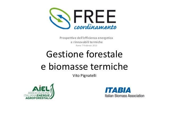 Gestione+forestale+e+biomasse+termiche