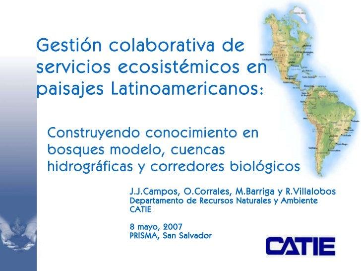 J .J. Campos, O . Corrales ,  M . Barriga  y R.Villalobos Departamento de Recursos Naturales y Ambiente CATIE 8  mayo, 200...