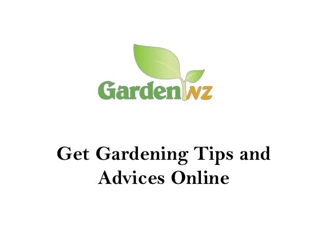 Get Gardening Tips and Advices Online