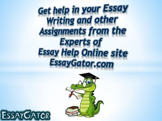 Help Writing A Essay