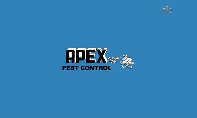 Get Pest Control Service At Affordable Price  Apex Pest. Protein Purification Principles And Practice. Business Advisory Services Sm Energy Company. Texas Liability Insurance Company. Simple Ecommerce Template The Post Star Jobs. Top Visualization Tools Restylane Tear Trough. Mental Health Counseling Program. Barber Shop Business Card Templates. The Alarm Company Jackson Ms