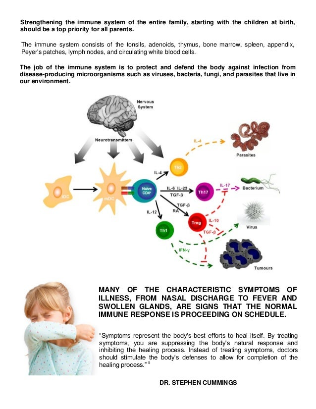 an Infant's Immune System is