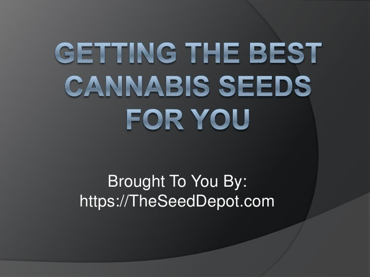 Getting the Best Cannabis Seeds for You<br />Brought To You By:<br />https://TheSeedDepot.com<br />