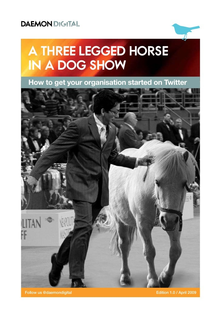 A three legged horse  in a dog show  How to get your organisation started on Twitter     Follow us @daemondigital         ...