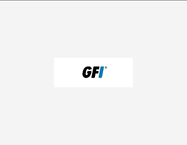 2  GFI: An overview GFI is a multinational software development company that helps small to mid-sized businesses secure, m...