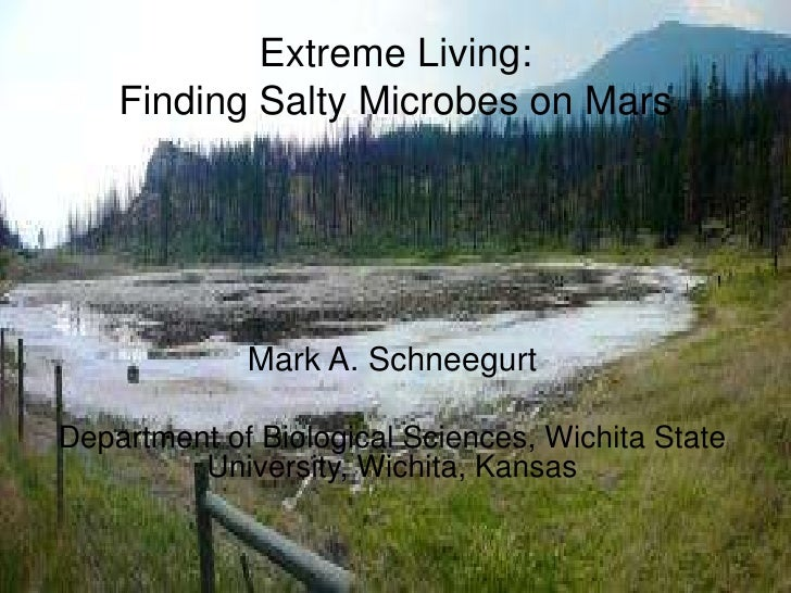 Extreme Living:Finding Salty Microbes on Mars<br />Mark A. Schneegurt<br />Department of Biological Sciences, Wichita Stat...