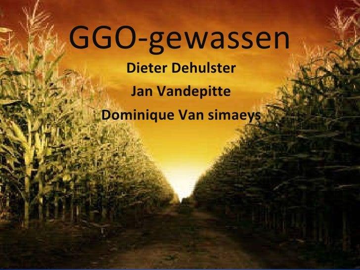 GGO-gewassen Dieter Dehulster Jan Vandepitte Dominique Van simaeys