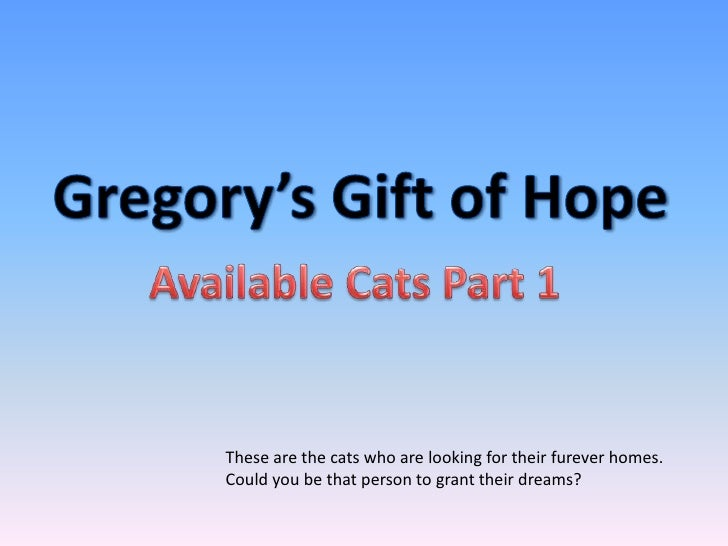 These are the cats who are looking for their furever homes.Could you be that person to grant their dreams?