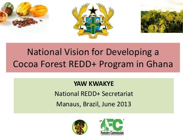 Ghana jnr presentation manaus june 2013