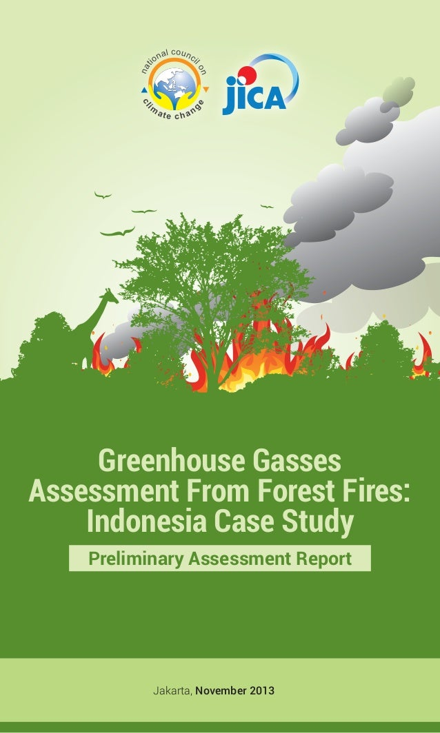 Ghg assessment from forest fires  - indonesia case study