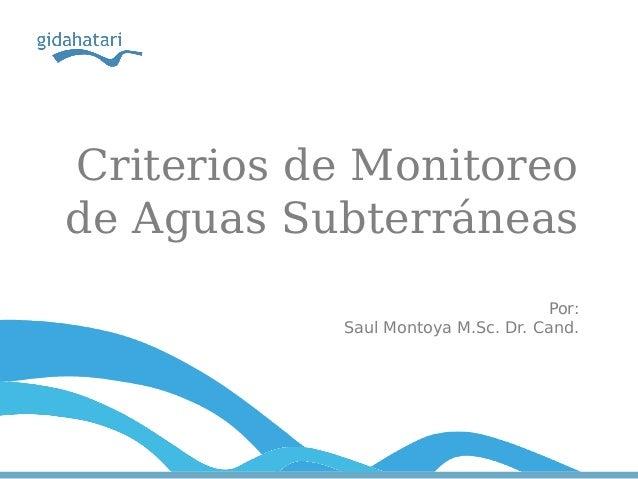 Criterios de Monitoreo de Aguas Subterráneas Por: Saul Montoya M.Sc. Dr. Cand.