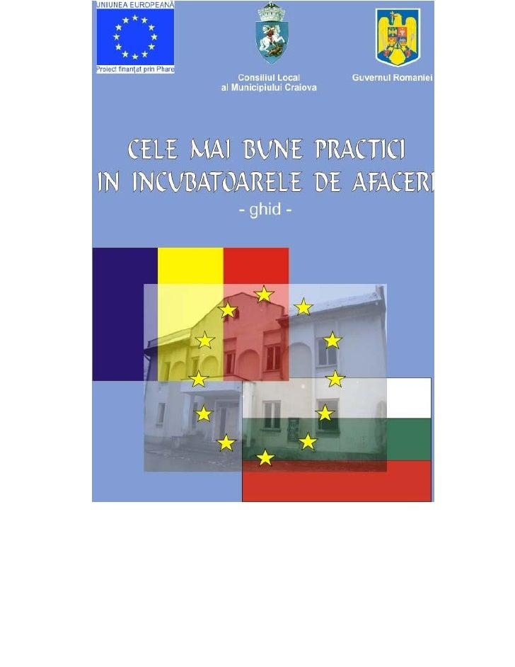 CELE MAI BUNE     PRACTICI IN INCUBATOARELE DE      AFACERI       -ghid-