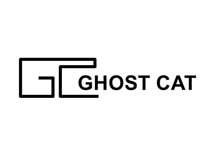 Ghost cat 以皮肤为主体的ui框架(唐翎)