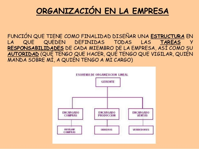la organizacion en una empresa: