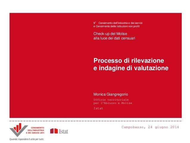 M. Giangregorio -  Processo di rilevazione e indagine di valutazione