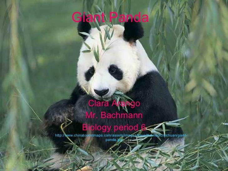Clara Arango Mr. Bachmann Biology period 6 Source:  http://www.chinatouristmaps.com/assets/images/travelthemepic/sichuan/g...