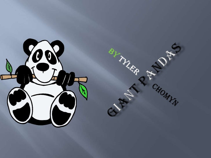 Giant panda's