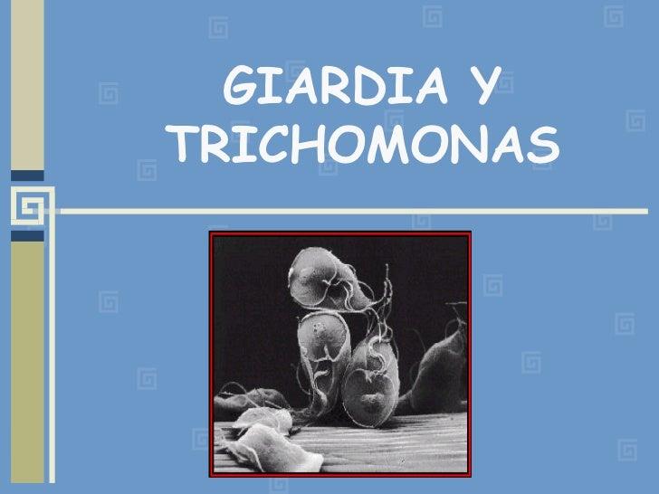GIARDIA Y TRICHOMONAS