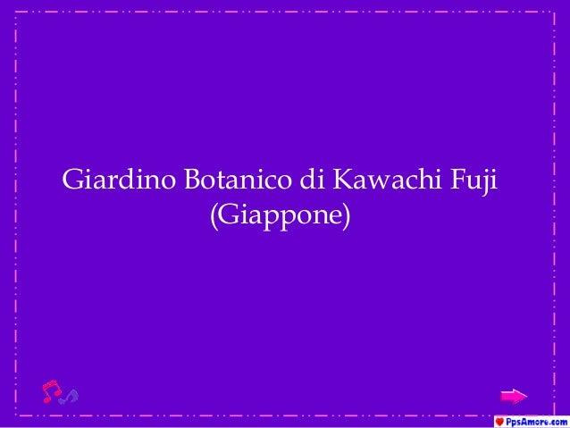 Giardino kawachi-fuji