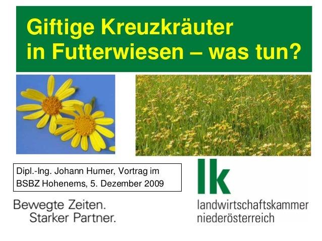 Giftige Kreuzkräuter in Futterwiesen – was tun? Dipl.-Ing. Johann Humer, Vortrag im BSBZ Hohenems, 5. Dezember 2009