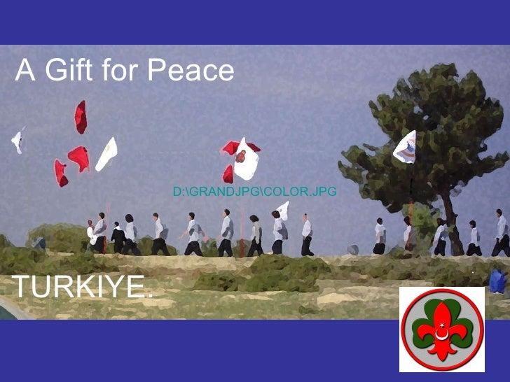 TURKIYE.   A Gift  for  Peace D:GRANDJPGCOLOR.JPG