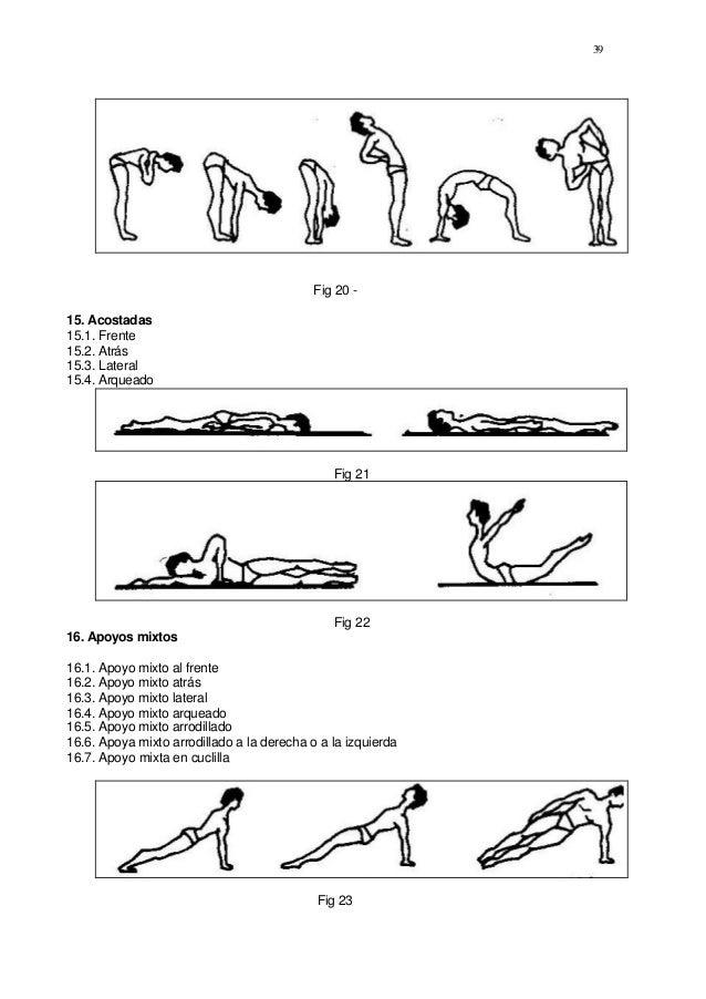 Gimnasia basica for Ejercicios de gimnasia