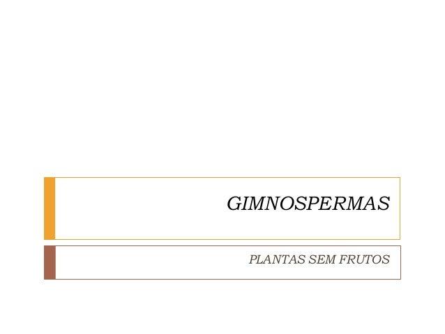 GIMNOSPERMAS PLANTAS SEM FRUTOS