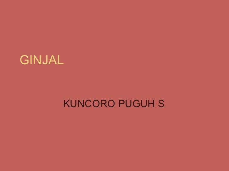 GINJAL KUNCORO PUGUH S