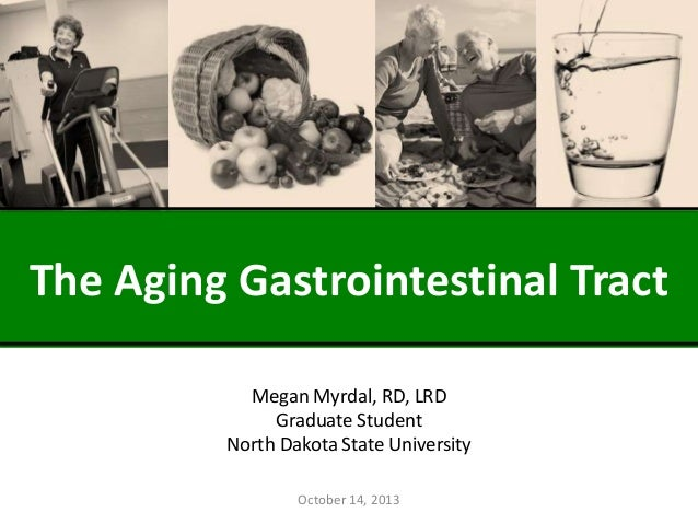 The Aging Gastrointestinal Tract