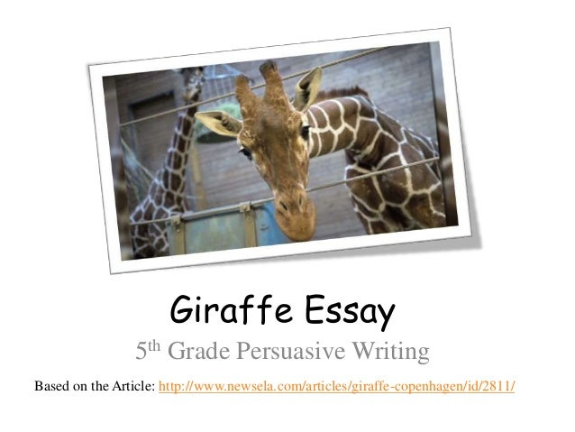 an essay on the debate on class size Online writing resource  we are the only essay site that adds original quality essays daily  jane austen and upper-class society.