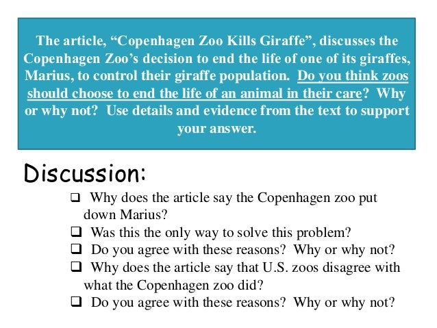 zoo argumentative essay Read this claim from an argumentative essay about zoos zoos must improve conditions so that they can meet the health and safety needs of the animals.