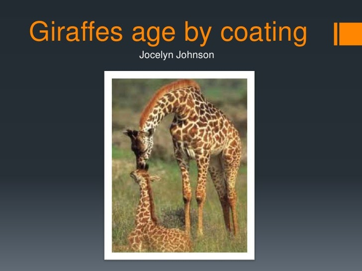 Girrafes age by coating