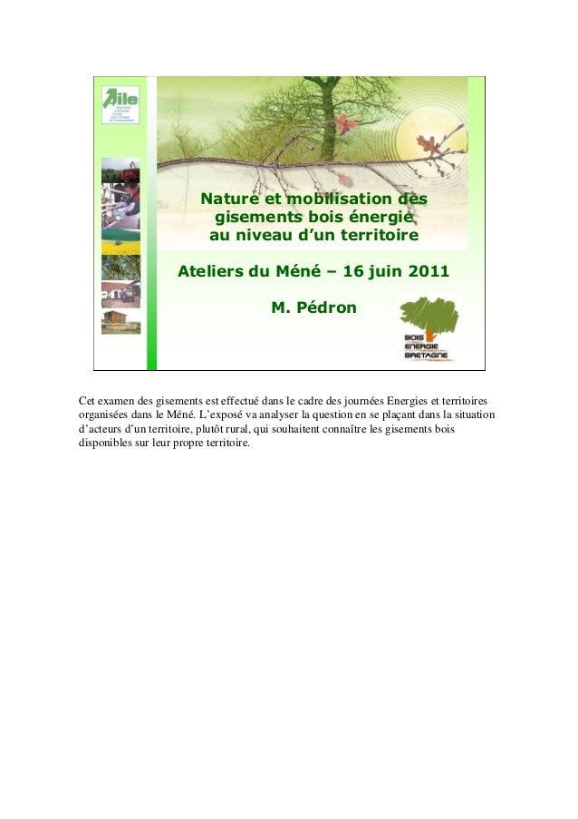 Nature et mobilisation des gisements bois énergie au niveau d'un territoire Ateliers du Méné – 16 juin 2011 M. Pédron Cet ...