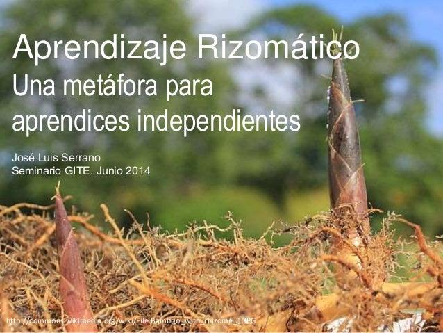 Aprendizaje Rizomático Una metáfora para aprendices independientes José Luis Serrano Seminario GITE. Junio 2014 http://com...