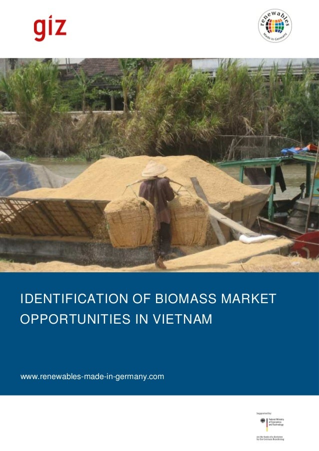 IDENTIFICATION OF BIOMASS MARKET OPPORTUNITIES IN VIETNAM  www.renewables-made-in-germany.com