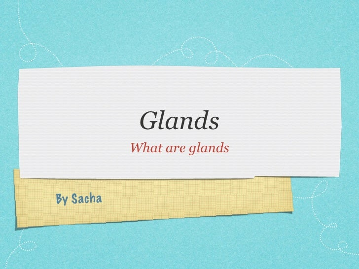 Glands              What are glands   By S ach a